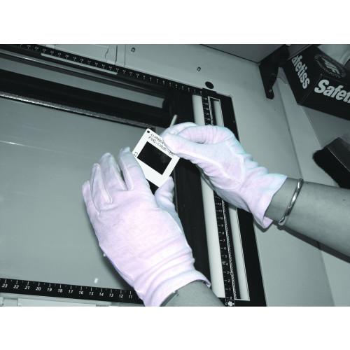 Gloves - Ladies - Cotton Liner - Medium - White